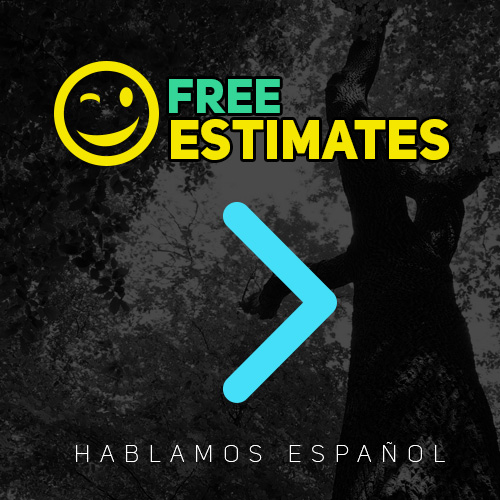 free tree triming estimates