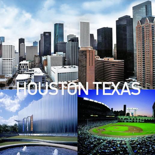 Houston texas tree service