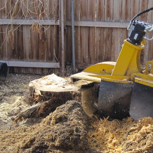 tree-stump-grinding-houston Tree Removal low-cost Houston TX